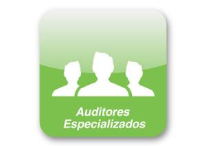 Auditores especializados