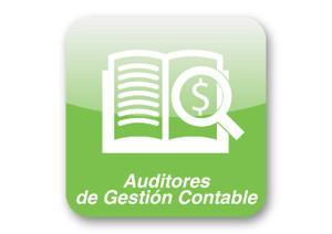 Auditores de gestión contable