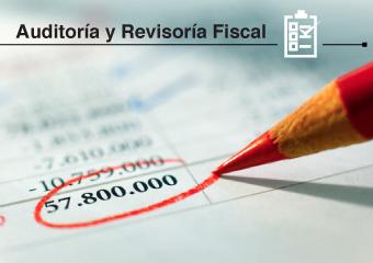 Auditoría y Revisoría Fiscal